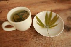 Taza caliente del blanco del té de la hierba del cáñamo del cáñamo Fotos de archivo