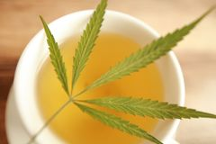 Taza caliente del blanco del té de la hierba del cáñamo del cáñamo Imagenes de archivo