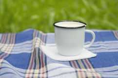 Taza con leche en mantel del tartán Imágenes de archivo libres de regalías