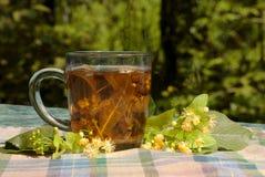 Taza con té del tilo imágenes de archivo libres de regalías
