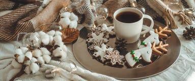 Taza con té o café, rama del abeto, galletas en la forma de los copos de nieve, manta hecha punto acogedora, algodón y guirnalda  fotografía de archivo