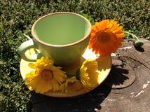 Taza con una flor Fotos de archivo libres de regalías