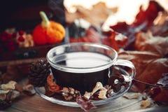 Taza de bebida oscura con el fondo del otoño Foto de archivo