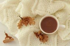 Taza de cacao caliente Fotografía de archivo libre de regalías