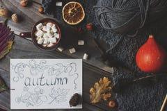 Taza de cacao con la melcocha, la postal hecha en casa del otoño, las hojas de la caída, la calabaza y las nueces en fondo de mad Fotos de archivo