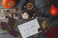 Taza de cacao con la melcocha, la postal hecha en casa del otoño, las hojas de la caída, la calabaza y las nueces en fondo de mad Imagen de archivo