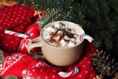 Taza de cacao o de chocolate con las melcochas y el bastón de caramelo contra ramas del pino y el suéter hecho punto tradicional Imagen de archivo libre de regalías