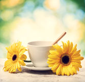 Taza de café con los gerberas amarillos Imagenes de archivo