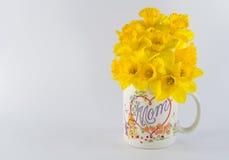 Taza de café de la mamá con los narcisos Fotografía de archivo