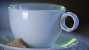 Taza de café en el vector metrajes
