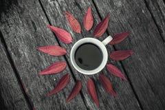 Taza de café en endecha del plano del fondo de las hojas Fotos de archivo