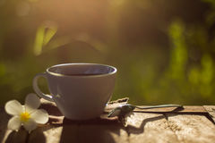 Taza de café en fondo verde Fotografía de archivo