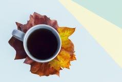 Taza de café en las hojas de arce y el papel multicolor, visión superior, fondo del otoño imagen de archivo