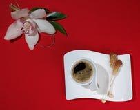 Taza de café en un fondo rojo fotografía de archivo libre de regalías