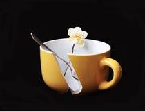 Taza de café quebrada, fotografía de archivo