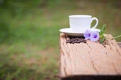Taza de café sólo Imagen de archivo
