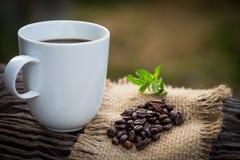 Taza de café sólo y de granos de café Imágenes de archivo libres de regalías