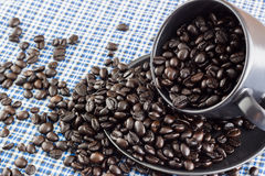 Taza de café y café de la semilla Imágenes de archivo libres de regalías