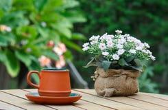 Taza de café y de flores con el árbol en fondo Foto de archivo