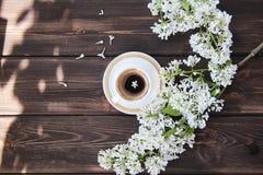 Taza de café y flores de dientes de león Imagen de archivo libre de regalías