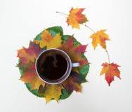 Taza de café y de hojas de otoño en el blanco Fotos de archivo libres de regalías