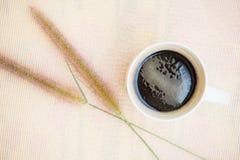 Taza de café y de Toddy Palm Pie Pots en plato Imagen de archivo