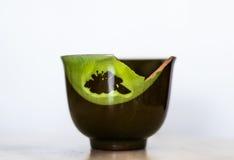 Taza de cerámica verde quebrada aislada en el fondo blanco fotografía de archivo