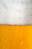 Taza de cerveza Foto de archivo