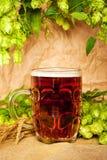 Taza de cerveza con el salto y el trigo Imagenes de archivo