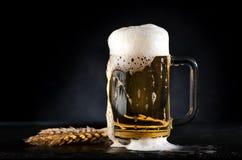 Taza de cerveza con las espiguillas del trigo fotos de archivo libres de regalías