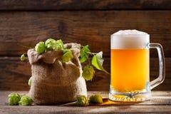 Taza de cerveza con los saltos verdes Foto de archivo libre de regalías
