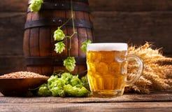 Taza de cerveza con los saltos y los oídos verdes del trigo Imágenes de archivo libres de regalías