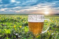 Taza de cerveza fría Fotografía de archivo libre de regalías