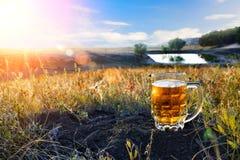 Taza de cerveza fría Imágenes de archivo libres de regalías