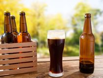 Taza de cerveza oscura y de botellas en la caja de madera en la tabla en fondo borroso del parque imagen de archivo libre de regalías