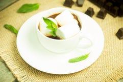 Taza de chocolate Foto de archivo libre de regalías
