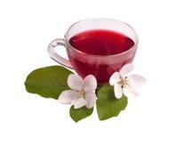 Taza de cristal de té del hibisco fotos de archivo