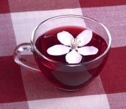 Taza de cristal de té del hibisco foto de archivo libre de regalías