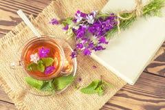 Taza de cristal de té del verano con las hierbas Imagen de archivo libre de regalías