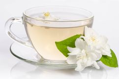 Taza de cristal de té con las flores y las hojas del jazmín Foto de archivo