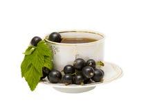 Taza de curran del té herbario y del negro Fotografía de archivo libre de regalías