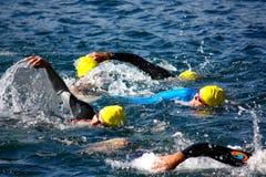 Taza de Cusio, Triathlon olímpico Imagen de archivo libre de regalías