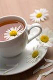 Taza de flores del té herbario y de la manzanilla Imagenes de archivo