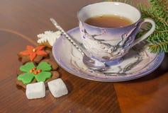 Taza de galletas del té y del pan de jengibre Fotos de archivo libres de regalías
