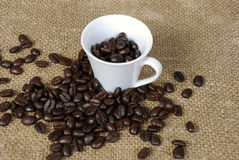 Taza de grano de café Fotos de archivo