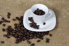 Taza de grano de café Imágenes de archivo libres de regalías
