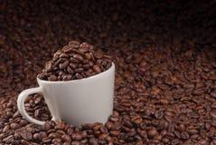 Taza de granos de café Imágenes de archivo libres de regalías