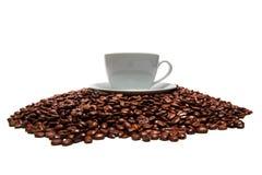 Taza de granos de café aislados fotos de archivo