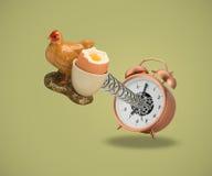 Taza de Hen Egg que sale del despertador Fotografía de archivo libre de regalías