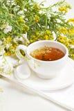 Taza de infusión de hierbas con las flores en el fondo blanco Imagen de archivo